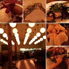 The publican Chicago
